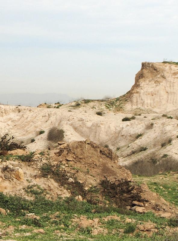 Dinámica del paisaje de Juan José Corona